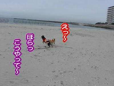 200208-23.jpg