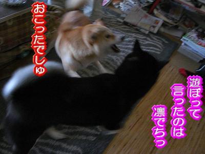 200215-5.jpg