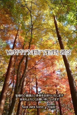 NYG_2012_gen.jpg