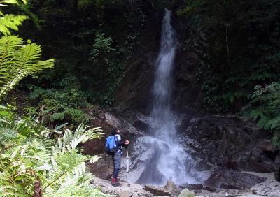 これが、櫛羅の滝