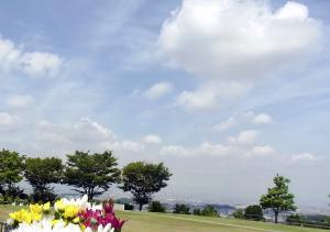 110808高台からの景色