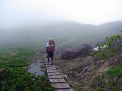 霧の中に誘う木道