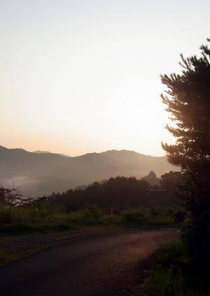 110814朝の景色