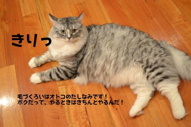 su-chan_kirikiri.jpg