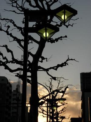 sakaue+011_convert_20110412181240.jpg