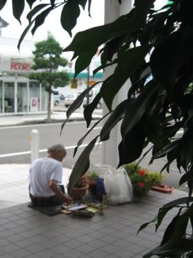鉢植えをスケッチ