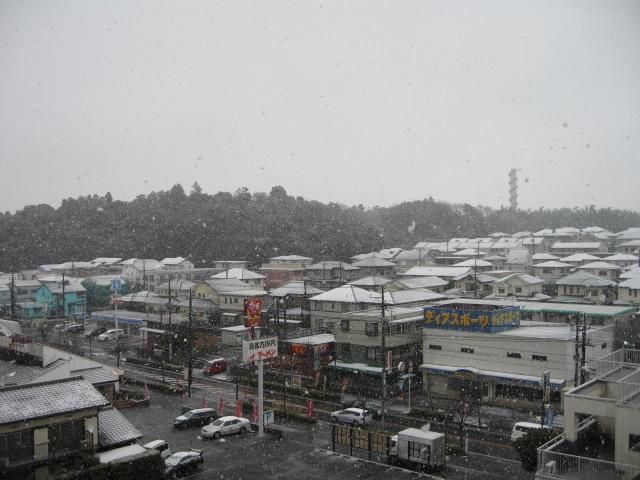 2月3日雪1