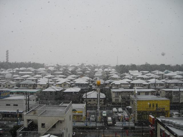 2月3日雪2