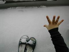 2008.2.3.雪と手 240x180