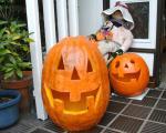halloween_convert_20111024223609.jpg