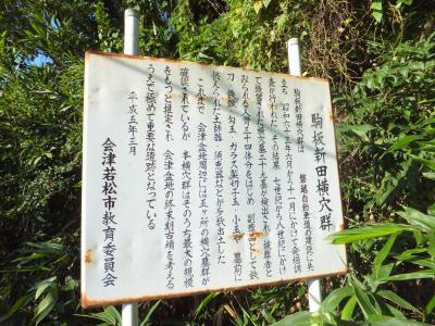 駒板新田横穴群2