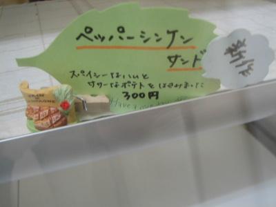 2011_05010003.jpg