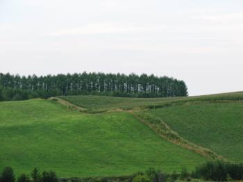 丘、丘、丘、丘、丘。。。