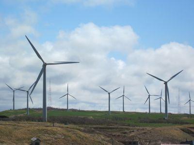 風車 アップ