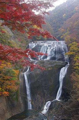 袋田の滝11.13