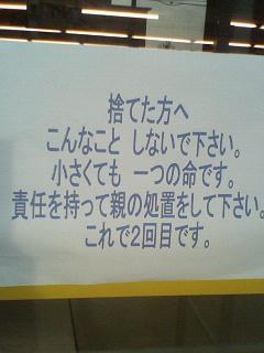 20070305090751.jpg