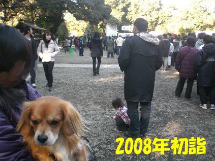 画像ブログ② 076のコピー