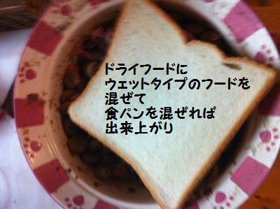 20110409_01.jpg