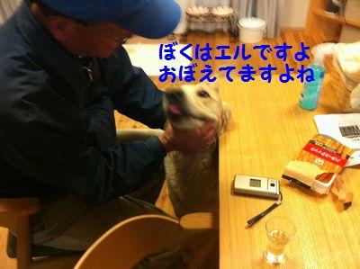 20110418_04.jpg