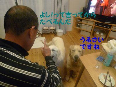 20110418_07.jpg
