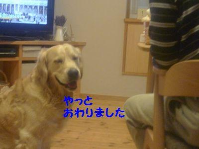 20110418_09.jpg