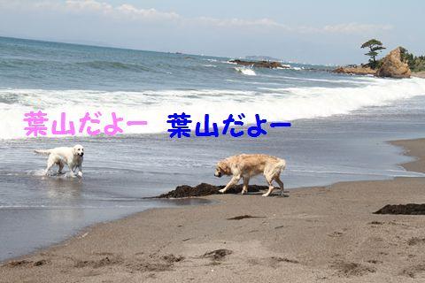 20110424_01_R.jpg
