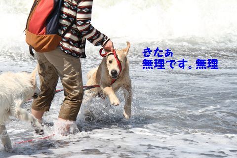 20110424_03_R.jpg
