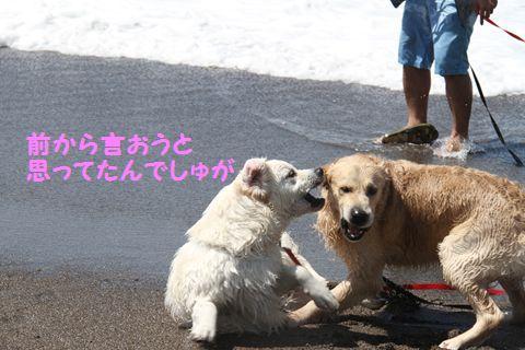 20110424_06_R.jpg