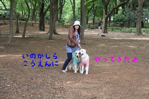 20110430_01_R.jpg