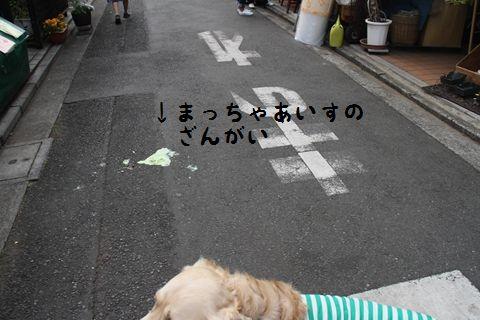 20110502_18_R.jpg