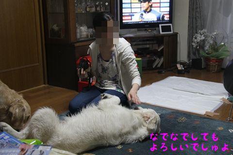 20110503_09_R.jpg