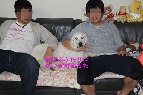 20110503_11_R.jpg