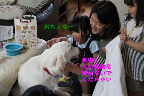 20110505_13.jpg