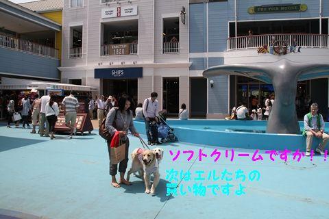 20110507_07_R.jpg