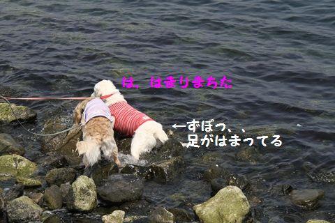 20110507_11_R.jpg