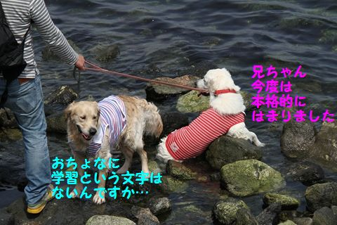 20110507_14_R.jpg