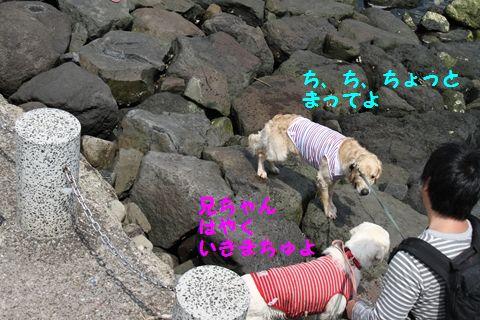 20110507_15_R.jpg