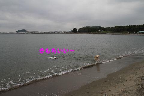 20110508_02_R.jpg