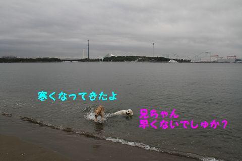 20110508_03_R.jpg