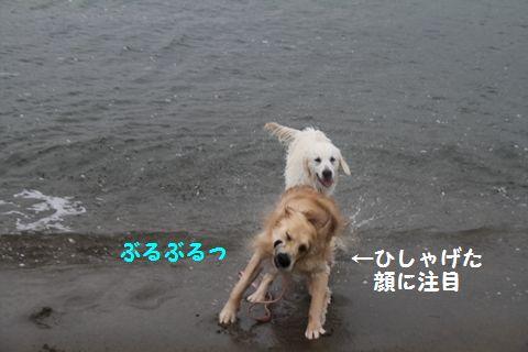 20110508_04_R.jpg