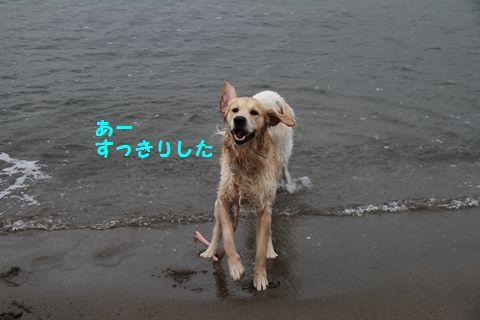 20110508_06_R.jpg