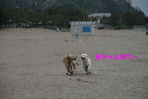 20110508_07_R.jpg