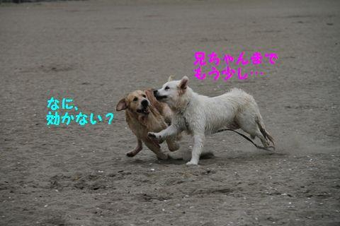 20110508_09_R.jpg