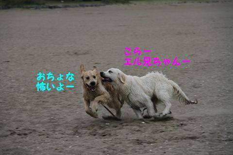 20110508_10_R.jpg