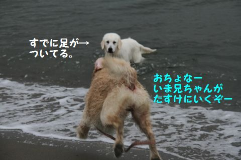 20110508_12_R.jpg
