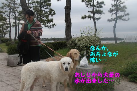 20110508_16_R.jpg