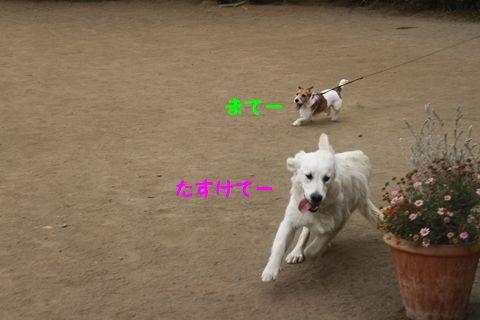 20110509_03_R.jpg