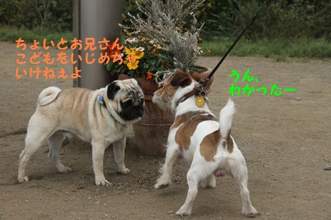20110509_04_R.jpg