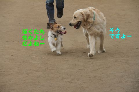 20110509_05_01R.jpg