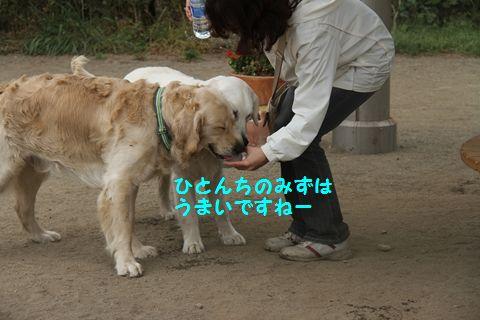 20110509_05_R.jpg